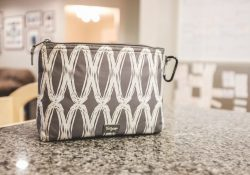 ollergy's best med bag: Thirty One Thermal Pouch